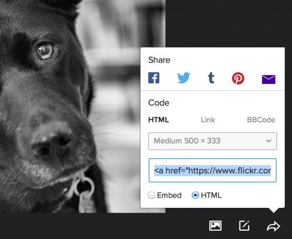 flickr share
