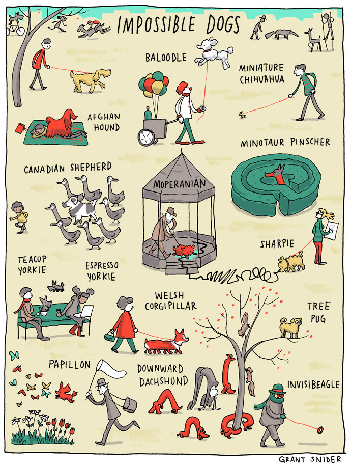 Used with permission by @grantdraws